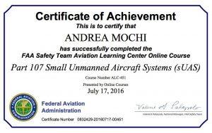 FAA SAFETY DRONE STATI UNITI